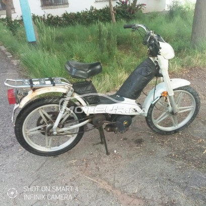 Moto au Maroc PEUGEOT Fox - 316640
