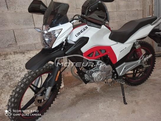 دراجة نارية في المغرب QINGQI Autre - 315031