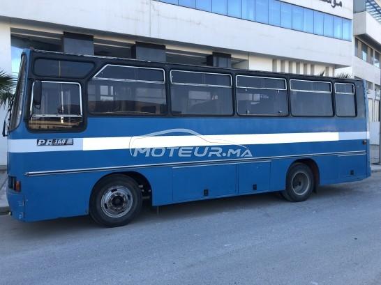 شاحنة في المغرب RENAULT Bus autocar pa-160 - 296033