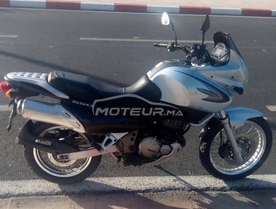 دراجة نارية في المغرب SUZUKI Xf 650 freewind - 261464