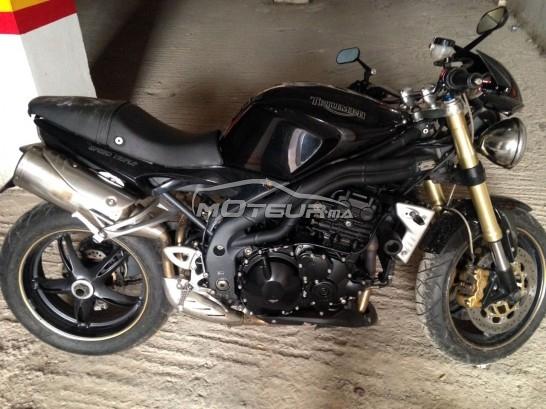 Moto au Maroc TRIUMPH Autre - 148655