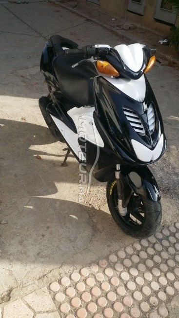 دراجة نارية في المغرب AC Cobra - 237019