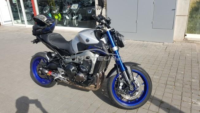 Moto au Maroc YAMAHA Mt Mt-09 race blue abs - 162956