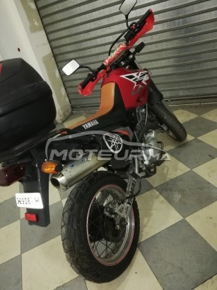 دراجة نارية في المغرب YAMAHA Xt 600 - 267449