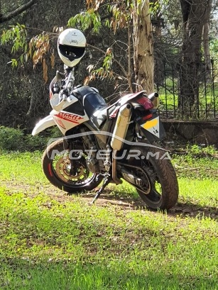 دراجة نارية في المغرب YAMAHA Xt 660 x supermotard - 297759