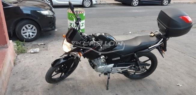 Moto au Maroc YAMAHA Ybr 125 - 276097